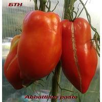 Семена томата Abbattista paste (Аббаттиста паста)