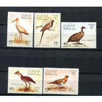 Сахара - 1991 - Птицы - полная серия - 5 марок. MNH.