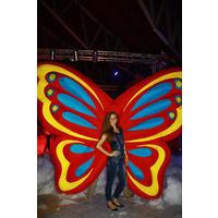 Яркий надувной костюм крылья бабочки