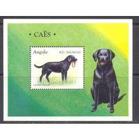 Ангола фауна собаки / Малый лист + блок /