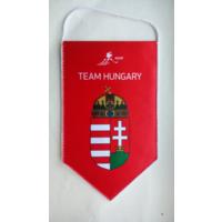 ХОККЕЙ - Официальный вымпел федерации хоккея Венгрии