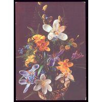 1987 год П.Костенко Цветы чист