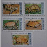 Республика Того.1996.черепахи