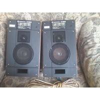 Колонки Радиотехника S-30B