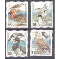Германия 1991 фауна птицы