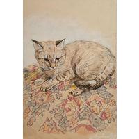 """""""Кошка"""" набросок цветными карандашами на тонированной бумаге А4 в рамке"""