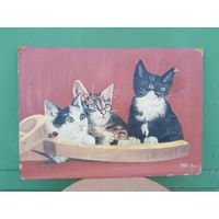 Картина, двп, Масло, Котята, с Рубля. Авторская 1980 год.