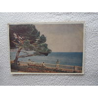 Почтовая карточка Ялта.Вид на море,фото И.Б.Голанд,1954,чистая-11