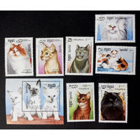 Кампучия 1988 г. Кошки. Фауна, полная серия из 7 марок + Блок #0141-Ф1