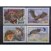 Замбия. 1989. Фауна. Летучие мыши