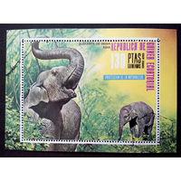 Экваториальная Гвинея 1976 г. Слоны Индии. Фауна. Блок #0172-Ф1