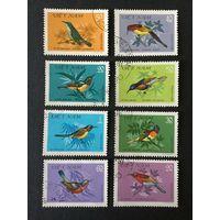Птицы-нектарницы. Вьетнам,1981, серия 8 марок