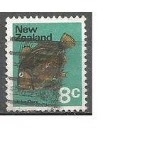 Новая Зеландия. Рыба-солнечник. 1970г. Mi#527.