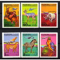 1971 ОАЭ. Фуджейра. Животные и воздушный транспорт