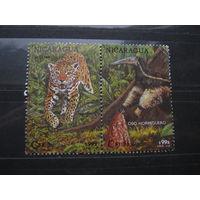 Марки - Никарагуа 1992 фауна дикие кошки ягуар муравьед