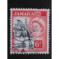 Английская Ямайка 1956 г. королева Елизавета II. Фауна.