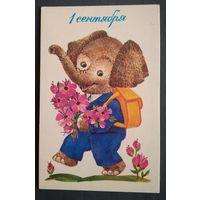 Галкина Н. 1 сентября. 1986 г. Чистая.