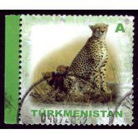 1 марка 2007 год Туркменистан Гепард 236