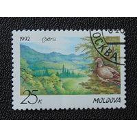 Молдавия  1992г. Птицы.