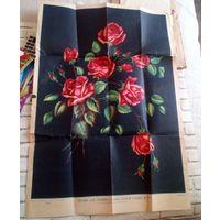 """""""Розы"""" рисунок для вышивки гладью,1961г."""
