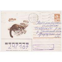 ХМК СССР, прошедший почту. Харза