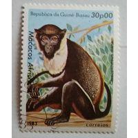 Гвинея-Биссау.1983. Макака
