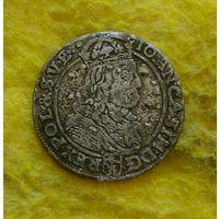 6 грошей 1667 г TLB Отличная