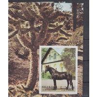 Шарджа - MNH - Природа - Лошади - Имперф