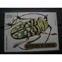 Марка - Бурунди, фауна, насекомые, жуки