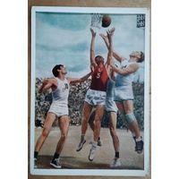 Баташев. Баскетбол. 1956 г. Чистая.