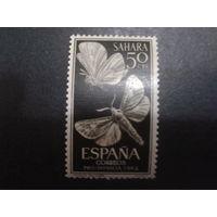 Сахара 1964 колония Испании Бабочки