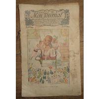 Журнал 1905 год