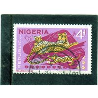 Нигерия. Mi:NG 180. Леопард (Panthera pardus) и детёныши. Серия: фауна. 1971