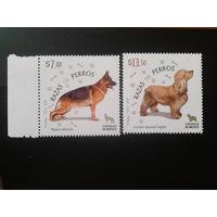 Мексика 2011 Собаки полная серия