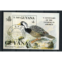 Гайана - 1991 - Птицы - [Mi. bl. 127] - 1 блок. Гашеный.