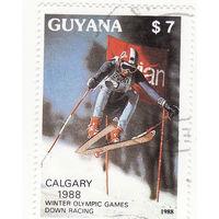 Зимние Олимпийские игры Калгари -горные лыжи 1988 год