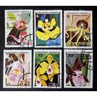 Куба 1980 г. Орхидеи. Цветы. Флора, полная серия из 6 марок #0019-Ф1P5