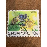 Сингапур. Пчёлы. Apis Javana. Марка из серии