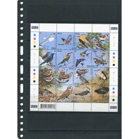 Мальта. Местные виды птиц, малый лист