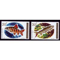 2 марки 1973 год Руанда Рыбы 577-578