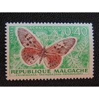 Мадагаскар. Бабочки.