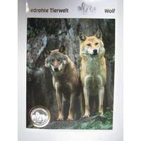 Сан-Марино. 10000 лир 1996, серебро. Животный мир в опасности. Волки.  Н.19