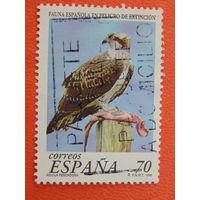 Испания 1999г. Птицы.