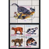 Танзания 1998г. кошки, 4м. 1 блок
