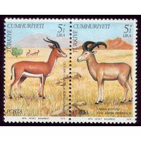 2 марки 1979 год Турция Фауна 2504-2505