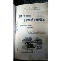 Из жизни русской природы. М. Богданов, 1911 год.