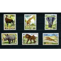 Куба 1978. Животные в зоопарке Гаваны./Фауна.  Полная серия