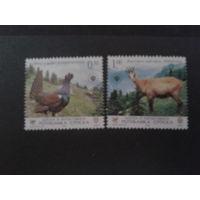 Босния и Герцоговина р-ка Сербская 2006 фауна полная серия