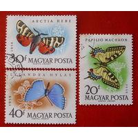 Венгрия. Бабочки. ( 3 марки ) 1959 года.