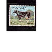 Панама-1967(Мих.959) ,  гаш., Корова, Фауна,